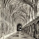 Gloucester Cathedral, Cloisters in July. by Maybrick