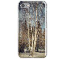 Birch Tree in Winter Original iPhone Case/Skin