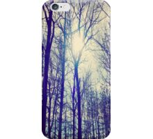 Ice Blue Sun in Winter iPhone Case/Skin