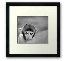 Lovable Framed Print