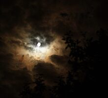 Moonfire by Samsticks