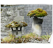Mosses on the roof Poster