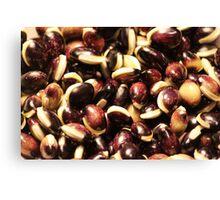 Purple Hycinth Beans Canvas Print