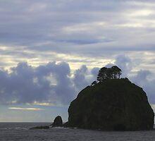 Lost coast by Bockman