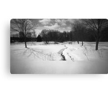 Pinhole Study: Winter in Waterloo No. 2 Canvas Print