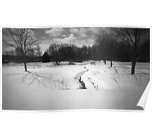 Pinhole Study: Winter in Waterloo No. 2 Poster