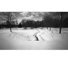 Pinhole Study: Winter in Waterloo No. 2 Photographic Print
