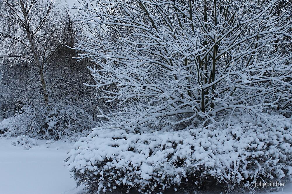 beautiful snow scene by juliepilcher