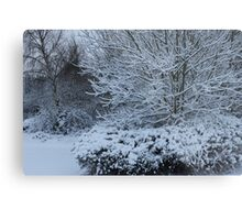 beautiful snow scene Metal Print