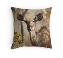 Greater Kudu Throw Pillow