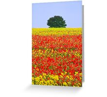 Primary Colours of Summer Greeting Card