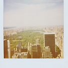 View over New York by smilyjay