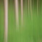 Green Forest Blur by MartinWilliams
