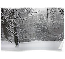Winter 2012 - 1 Poster