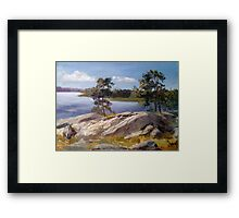Stones and pines Framed Print