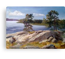 Stones and pines Canvas Print