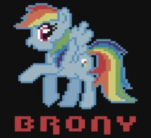 Bro + Pony = Perfect Match by Alsvisions