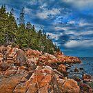 USA. Maine. Acadia National Park. Rugged Coastline. by vadim19