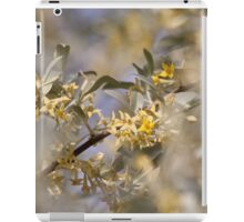 Olive Willow iPad Case/Skin