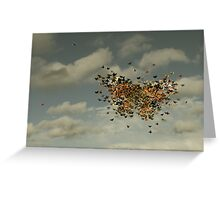 1128 Greeting Card
