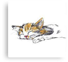 Sleeping Kitten Canvas Print