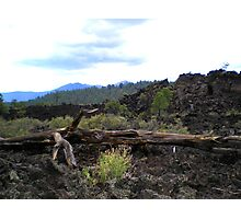 SUNSET CRATER NATIONAL MONUMENT ARIZONA AUGUST 2006 Photographic Print