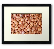 Red Onions Framed Print