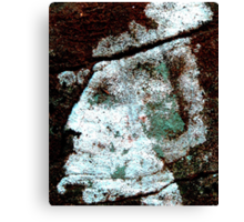 Face Formed Of Lichens On Stone, Gettysburg Battlefield Canvas Print