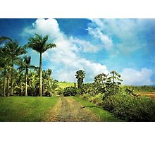 Dreaming of Hilo Photographic Print