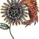 Hummingbird by Jenny Wood