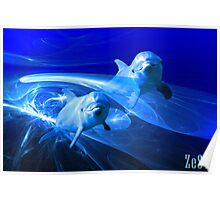 Dolphins in deep blue. Poster
