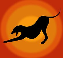 Silhouette of a Stretching and Yawning Dog on Orange Background by ibadishi