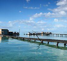 Big Rat Island by Joel Mason