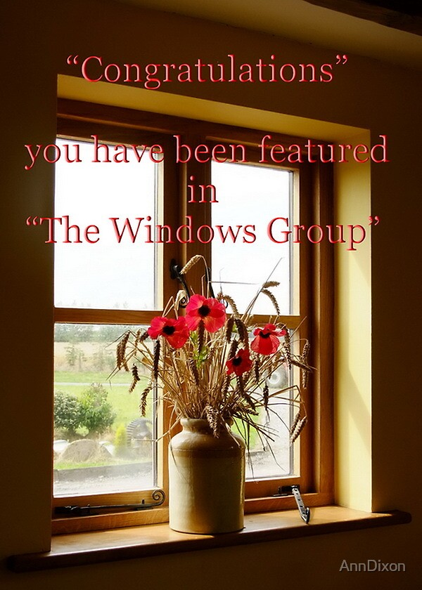 Windows Banner by AnnDixon