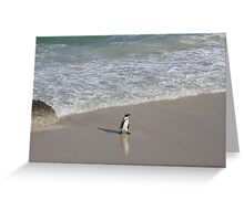 Penguin 3-Way in South Africa Greeting Card