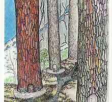 We Live In The Woods by merrilymccarthy