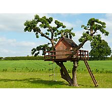 Beautiful creative tree house Photographic Print
