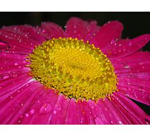 It's a pinker! Photographic Print