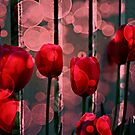 Tulip Bubbles by Mattie Bryant