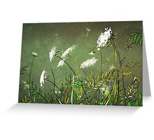 Queen Anne's Lace 14 Greeting Card