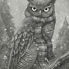 Winter Owl by Terry  Fan