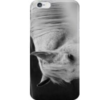 Arabian Horse Black and White iPhone Case/Skin