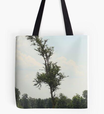 Indubitably Tote Bag