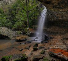 Horseshoe Falls. (2-6-13) by Warren  Patten