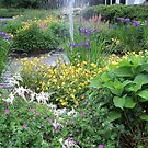 Garden Pond by Sandra Fortier
