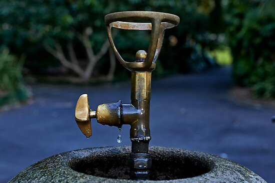 Botanic Gardens Bubbler by Ian English