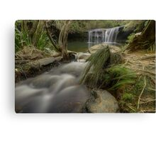 Highlands Beauty. Canvas Print