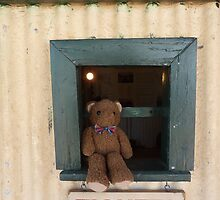 Where to? Ted ,the new ticket officer  by Virginia McGowan