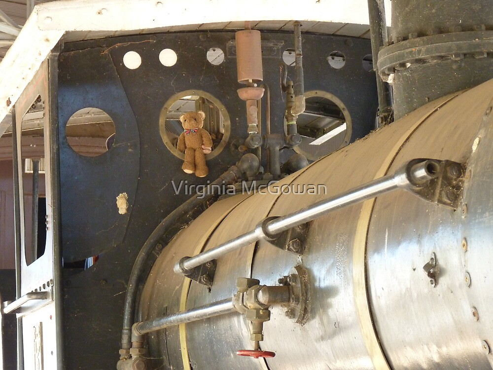 Ted in the best seat on the big steam train! Wow how good is this!  by Virginia McGowan