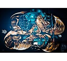 Fish and Batiscaf Graffiti  Photographic Print
